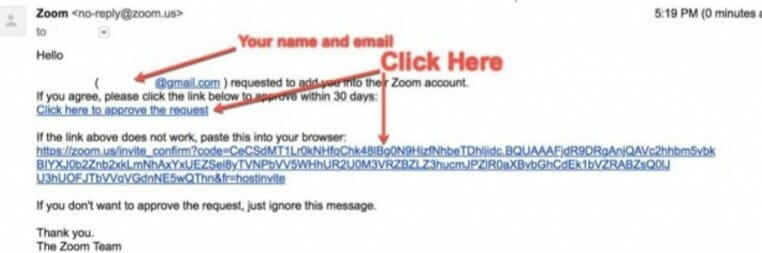 Screenshot of Zoom account transfer email